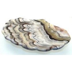Mexican Onyx Scalloped Altar Dish 09