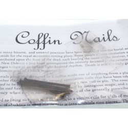 Set of Five Coffin Nails