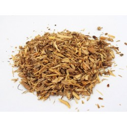 10gms Angelica Root